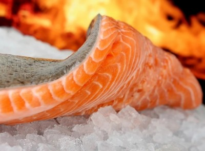Major Grocery Retailers Reject Genetically Engineered Fish | myfoodistry