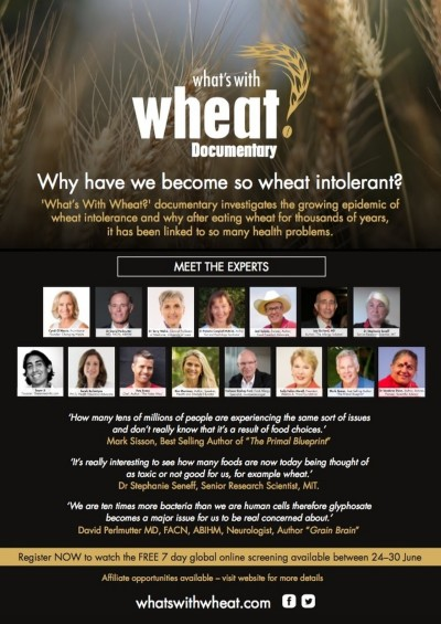 What's With Wheat   myfoodistry